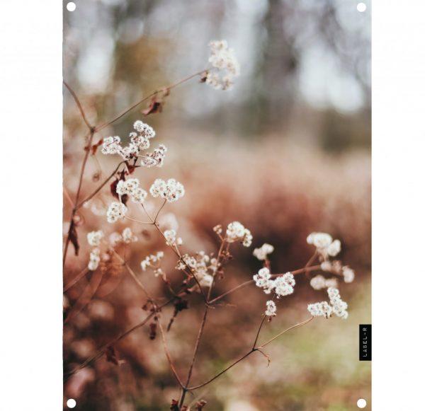 dry-flower-lag-res.jpg