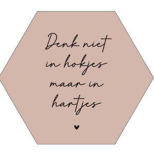 l-hokjes-hexagon-denk-in-hokjes-rose.jpg