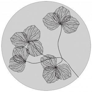 lag-res-gedroogde-bloemen-40cm-grijs-1-1.jpg
