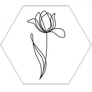 tulp-1lijn-wit-hexagon-5.jpg