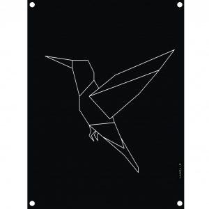 kolibrie-zwart-1.jpg