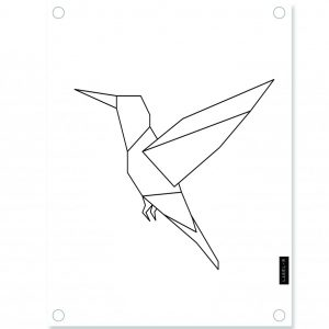 wit-kolibrie-lr-.jpg