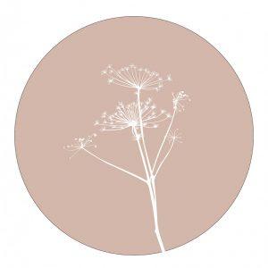 lrberenklauw-rose-wit-38cm.jpg