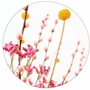 pink-en-yellow-flowers-30cm.jpg