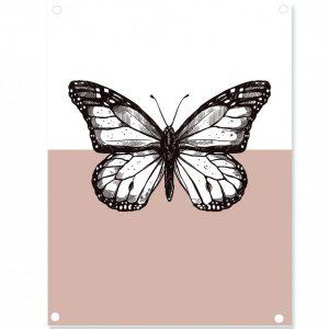butterfly-oudrose-.jpg